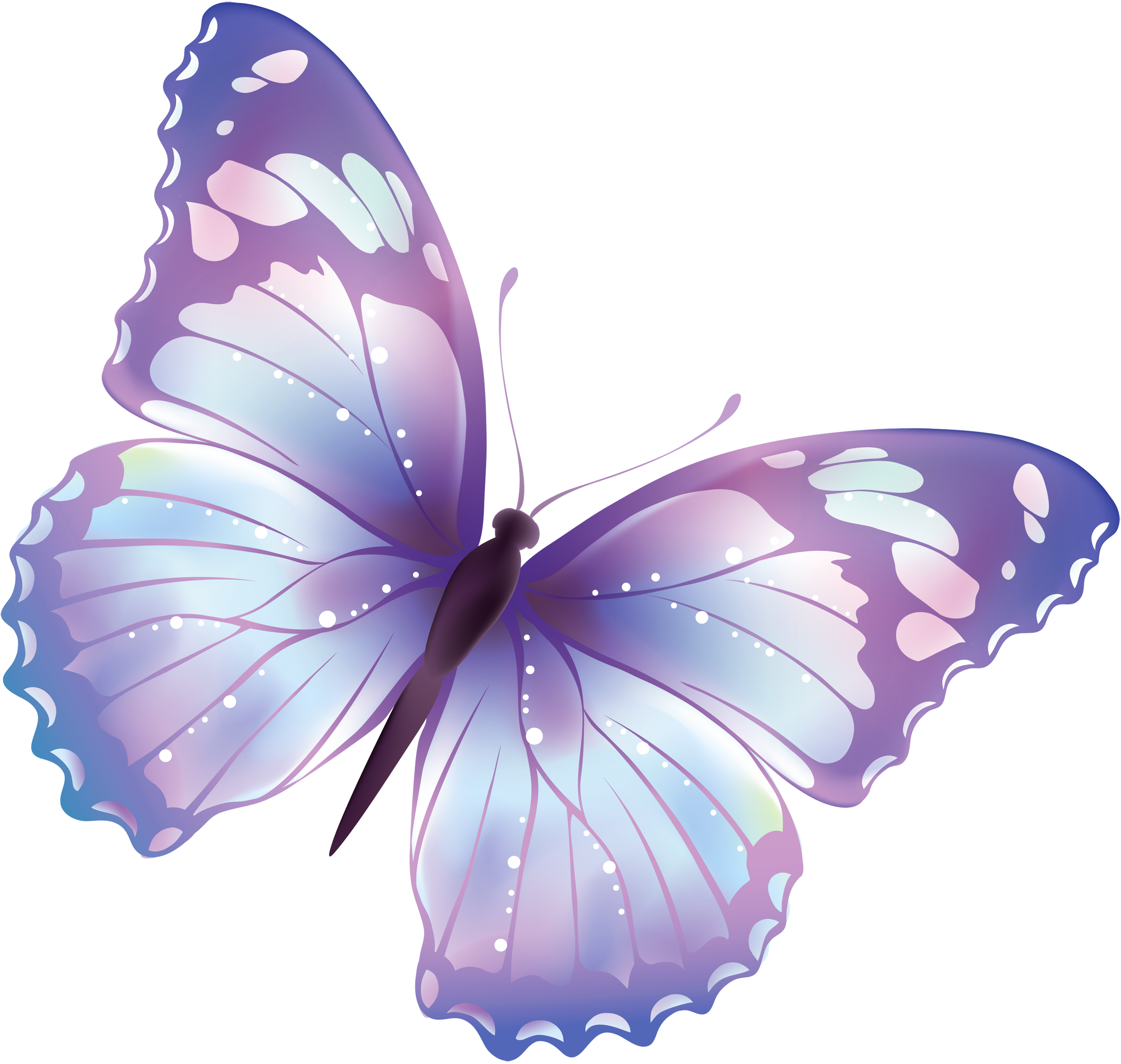 butterfly_PNG1040